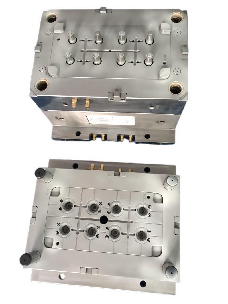 multi cavity mold5